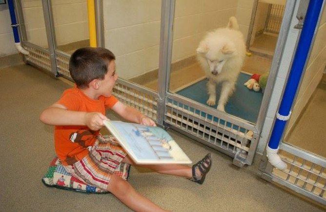 bambini,cani,lettura,fiabe,Missouri,canili,amicizia